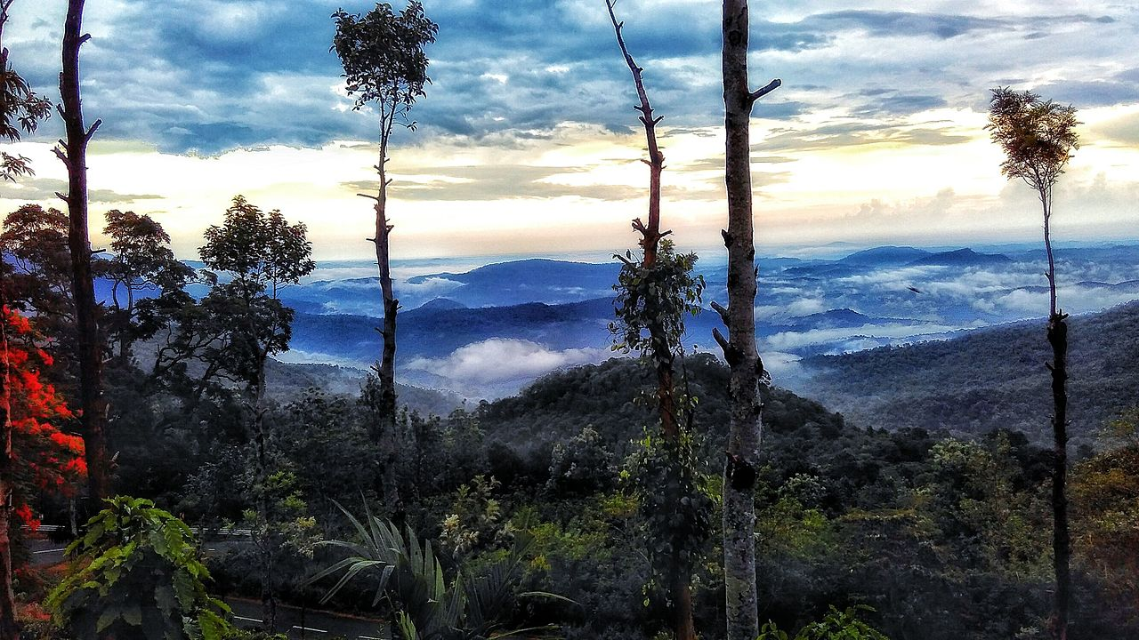 This hill station in Kerala will become your new favourite destination