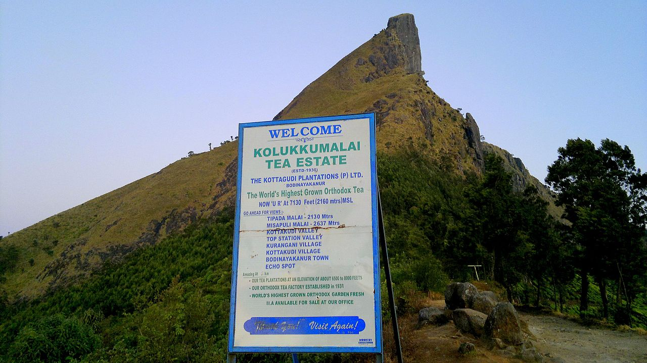 savaari-highest-tea-estate-monsoon