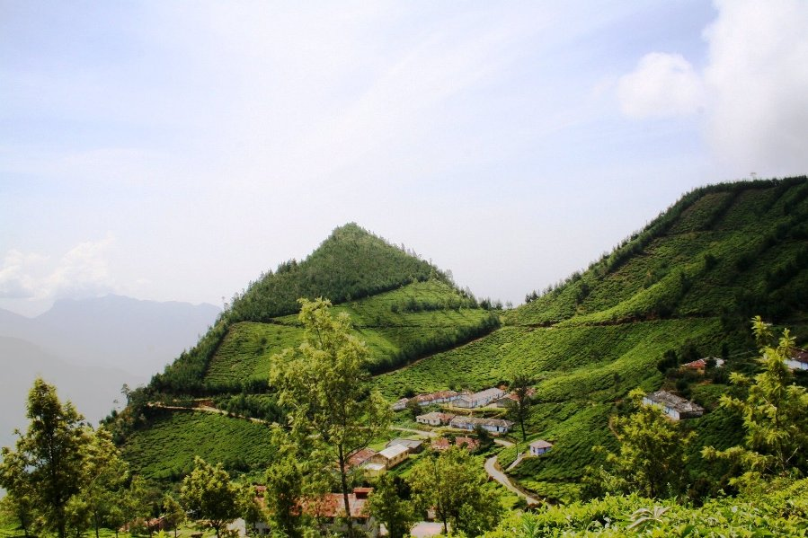 savaari-kolukkumalai-tea-estate-8000ft