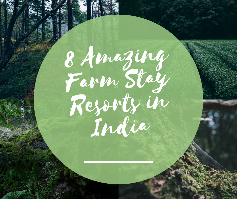 8 Amazing Farm Stay Resorts in India