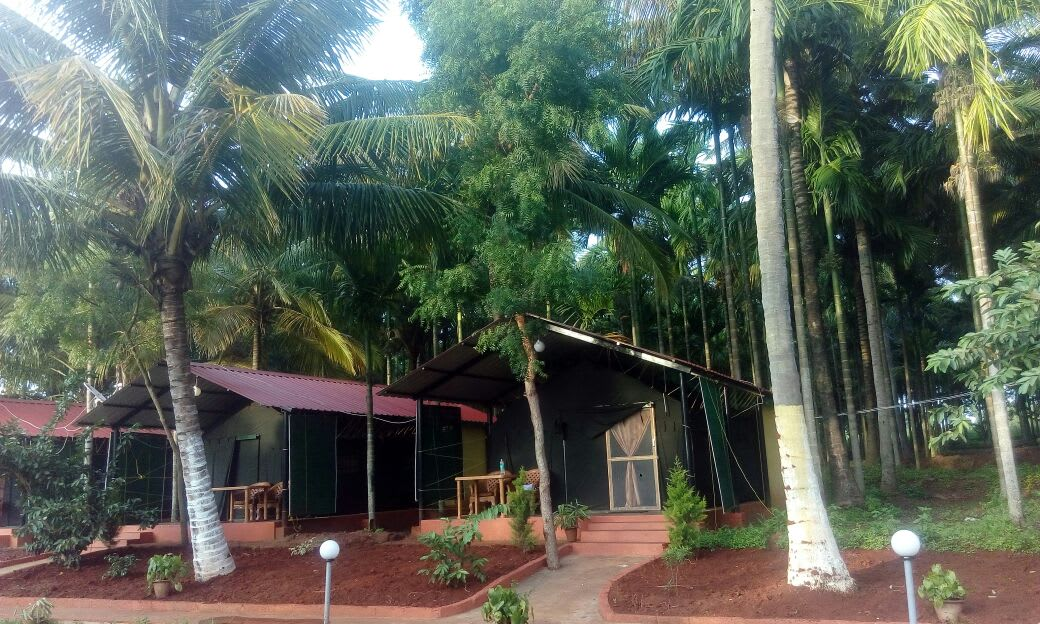 Savaari-kabini-farm-stay-resort-india