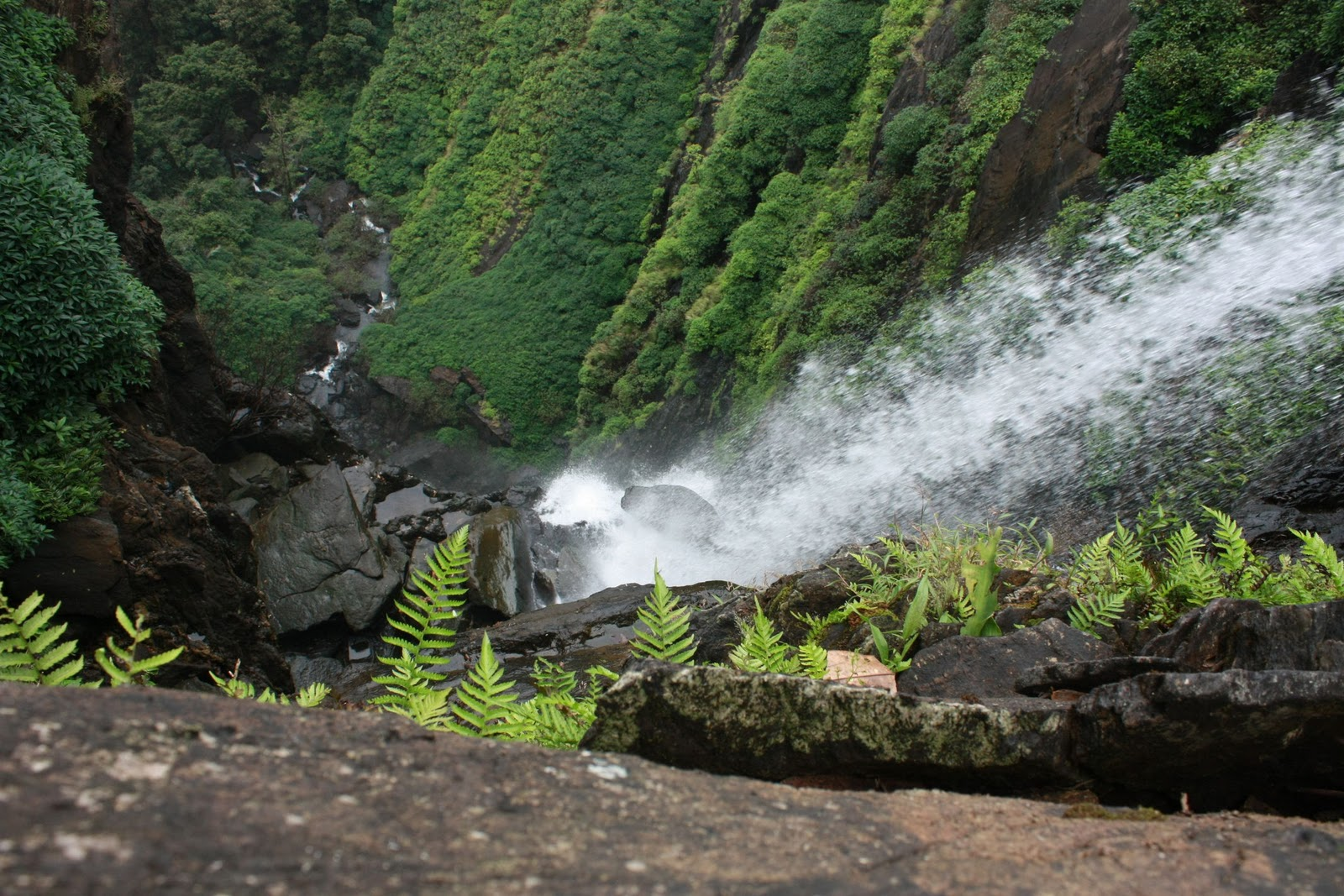 savaari-agumbe-monsoon-destinations