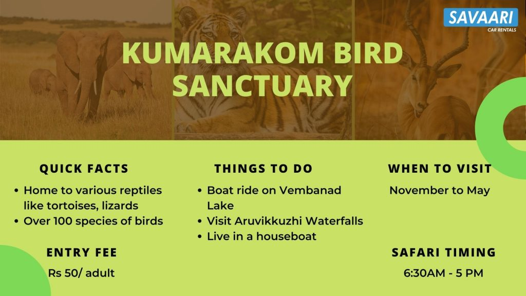 kumarakom-bird-sanctuary-facts