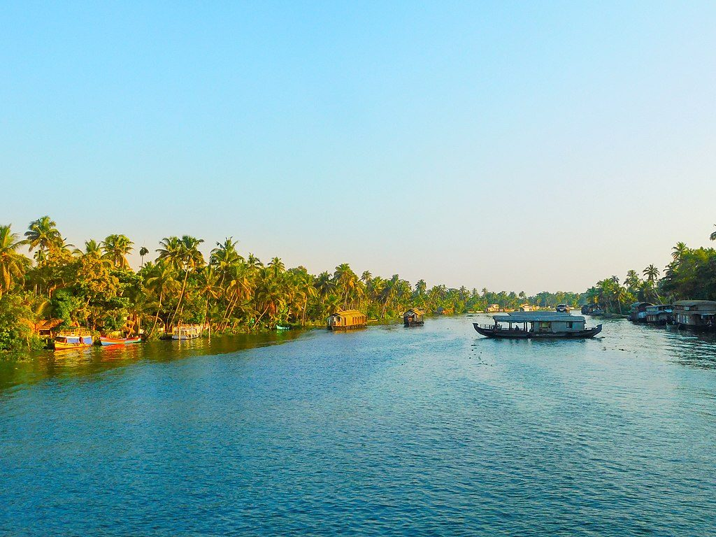 Kumarakom-Bird-Sanctuary-things-to-do-travel-guide